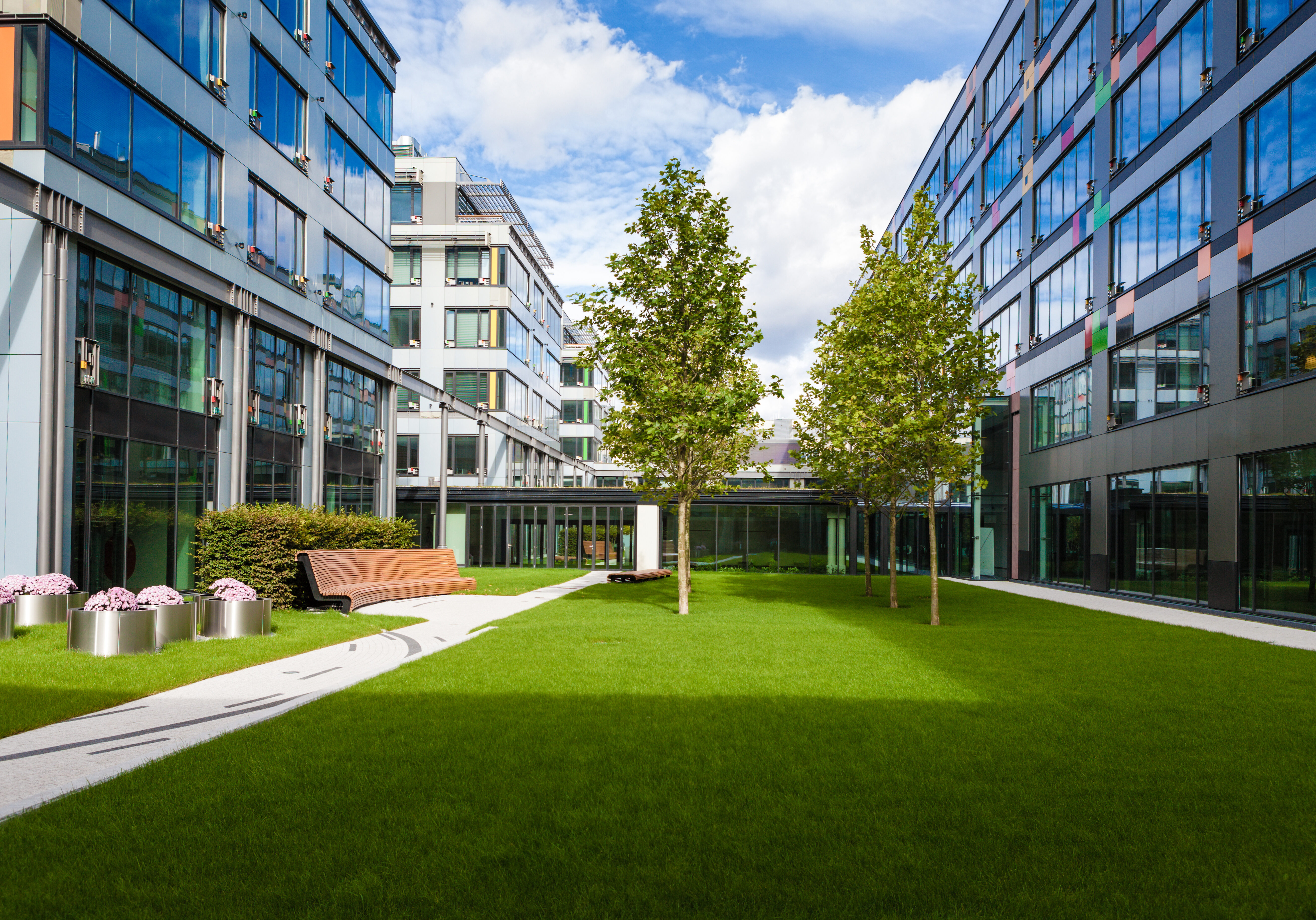 Modern office park with green lawn, trees and bench